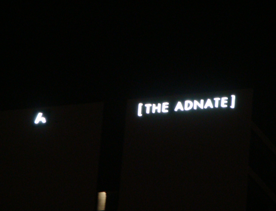 The Adnate illuminated signage at night